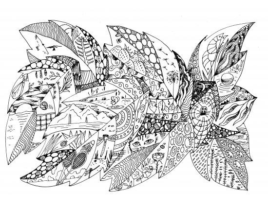 Скачать Рисунки ручкой цветы 1920x1080 px