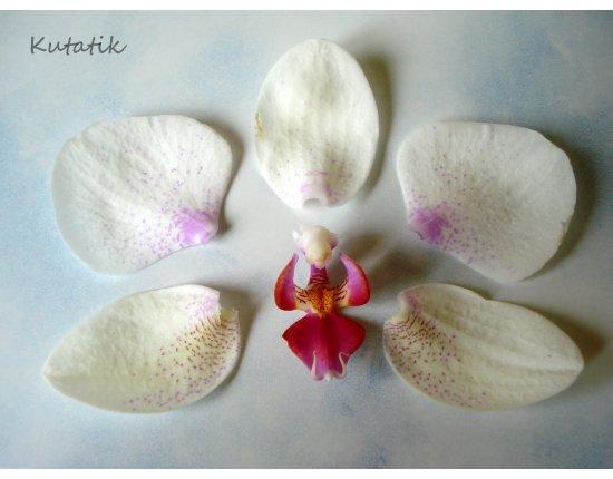 Орхидея из полимерной глины фото мастер класс