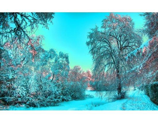Скачать Обои природа зимой 1024x640 px
