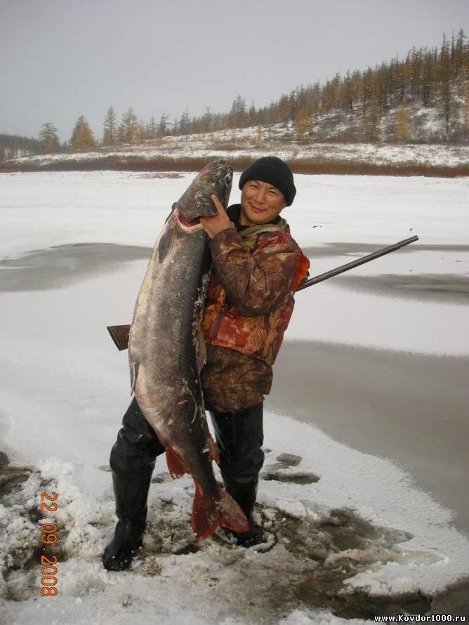рыболовные туры из тюмени