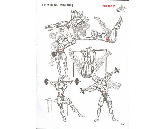 Скачать Упражнения для похудения боков фото 800x1100 px