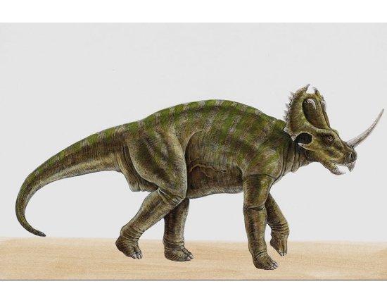 Скачать Картинки динозавров с названиями 768x512 px