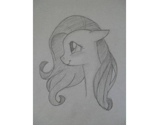 Скачать Рисунки карандашом для срисовки животных 2448x3264 px