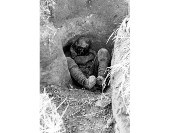Скачать Фото убитых советских солдат 600x880 px