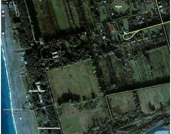 Скачать Поселок цитрусовый абхазия фото 1311x1036 px