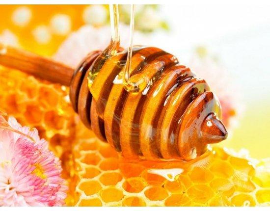 Скачать Картинки пчелы мед пасека 900x675 px